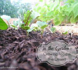 Small Of Rain Gutter Grow System