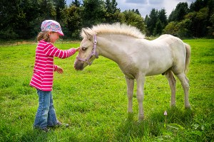 Meeting the foal - Panasonic GX1