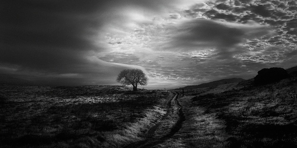 Nathan Wirth Featured Image