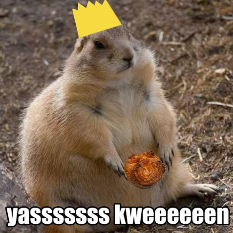 kweensquirrel