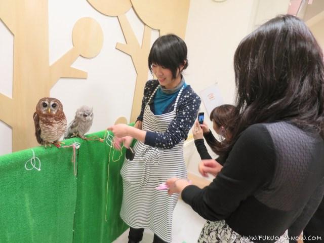 fn183 owl cafe 113
