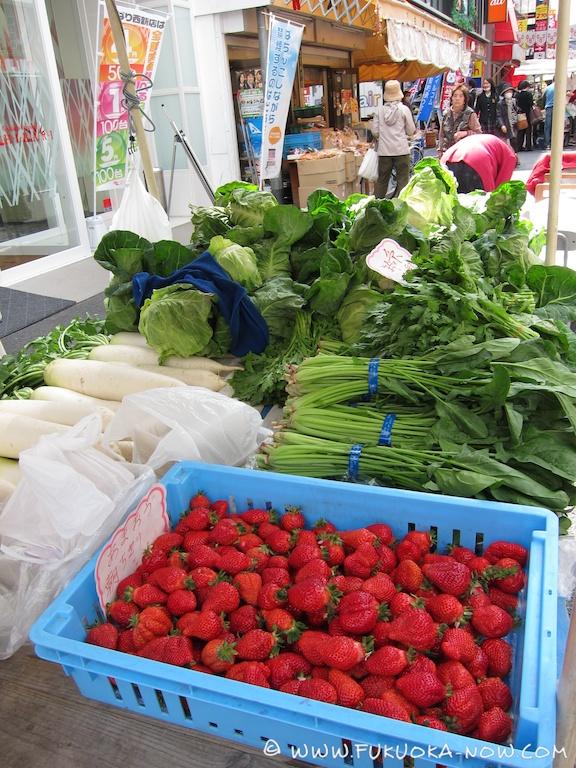 fn185 veggie Emiko 022