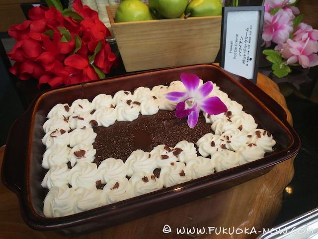 hilton Hawaii 2014 027