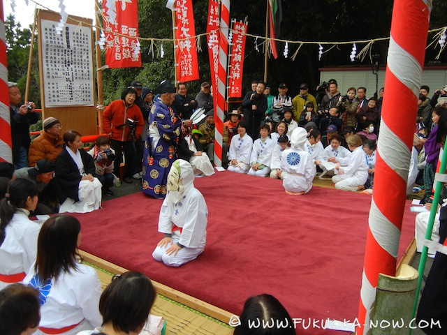 Blindfolded Sumo 2015 005