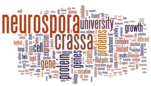 Neurospora 2010 abstracts Wordle