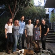 L-R: Coco, Megan, Aaron, Ari, Amy, and Tristan. Bottom row: Chips and Maybelle.