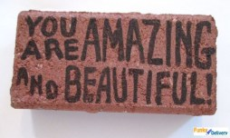 Send a Brick - You Are Amazing and Beautiful
