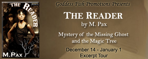 The Reader Banner copy