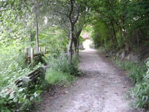 riverdalefarm16