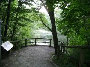 riverdalefarm17