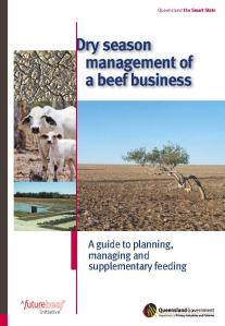 Dry_season_management_of_a_beef_business_cover_LR