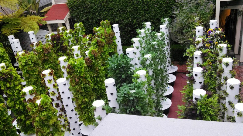 Large Of Backyard Vertical Garden