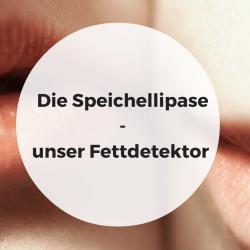 Speichellipase