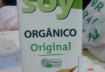 Bebida de Soja Green Soy Organico Original Native