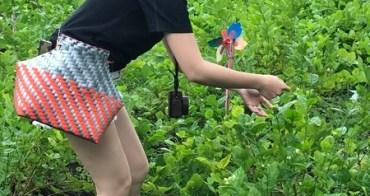 花壇無毒茉莉花結合紅磚工藝的系列活動「花現幸福小旅行」