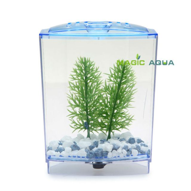 Betta fish tanks for 2 fish betta bow front 1 2 3 tank for 2 gallon betta fish tank