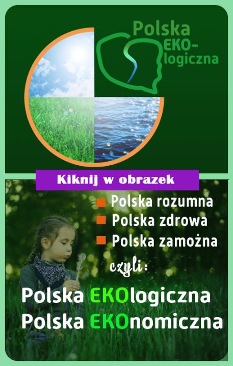 Polska eko bis