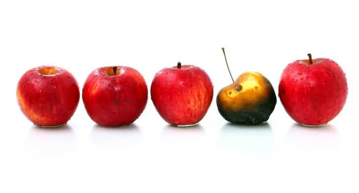 one-bad-apple