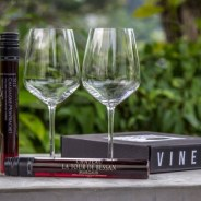 Introducing VINEBOX: The First Wine by the Glass Subscription Club