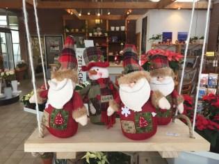 Weihnachten_Gärtnerei_Enge_2016_Advent_6
