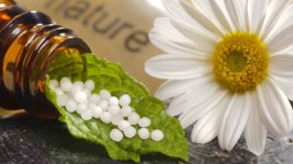daisy with leaf holding holistic medicinal beadlets