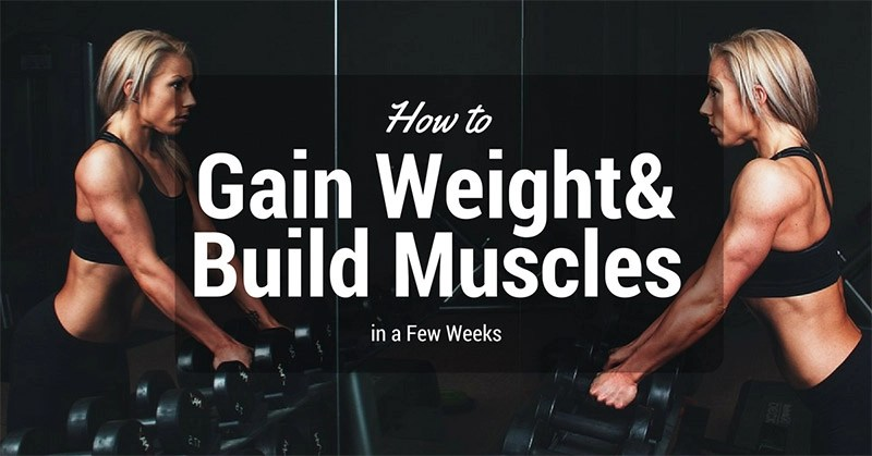 Image result for components of muscle building