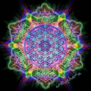 flower of life colorful 300x300 Sacred Geometry