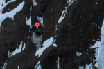 Two underground bases found in Antarctica; what are they?