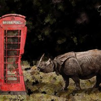Wrong Number - Rhino vs Phone Booth