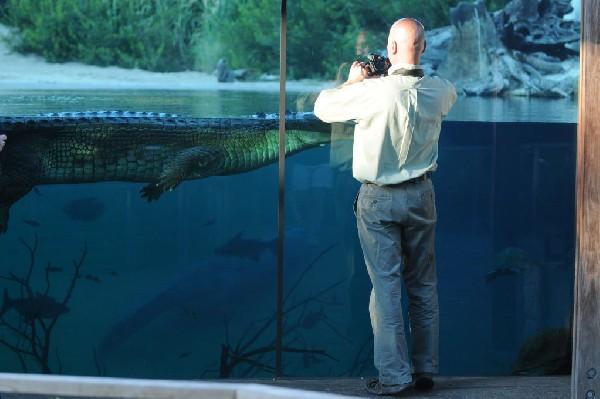 Kingsnake.com Blog   Find a zoo, aquarium, or wildlife park near you