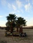 Our wild campsite