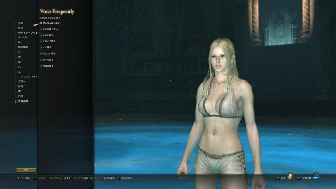 dragons-dogma-online_150326 (6)