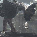 『人喰いの大鷲トリコ』ついに今年のE3に出展か ─ 英紙The Guradianが「非常に確かな情報筋から聞いた」と報じる