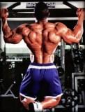 treino-de-costas-ganharmassamuscular.net