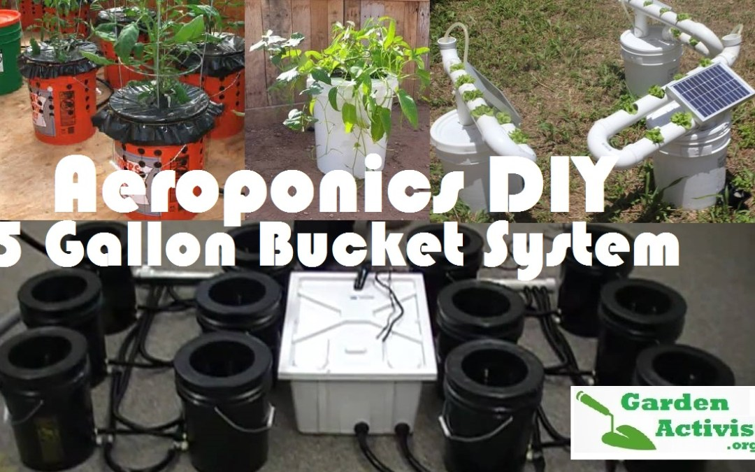 Aeroponics System: The DIY 5 Gallon Bucket