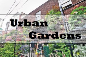 Urban Garden Towers