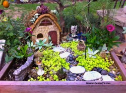 Manly Miniature Guide Video Inexpensive Garden Fairies Make A Fairy Garden Miniature Guide Video Gardencenter Tv Make A Fairy Garden
