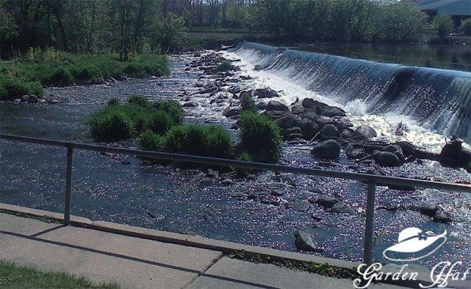 Burlington Wi - Fox River Falls