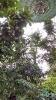 Garden_Hat_Garden_Adventures_Mitchell_Park_3