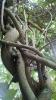Garden_Hat_Garden_Adventures_Mitchell_Park_9_37