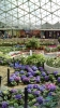 Garden_Hat_Garden_Adventures_Mitchell_Park_Show_Dome_9_11