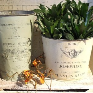 Antique French Flower Buckets