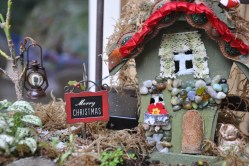 Small Of Christmas Fairy Garden Ideas