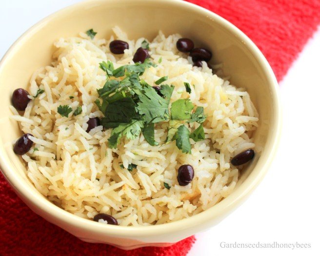 Black Beans Basmati Lime Rice