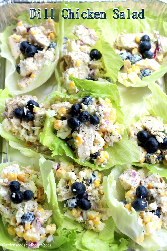 Dill Chicken Blueberry Salad