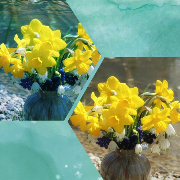 pond vase collage