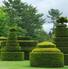 Topiary garden at Longwood copy