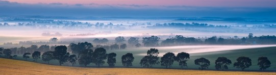 Sa Clare Valley shutterstock_124797922