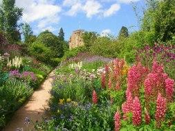 June Border at Crathes Castle Gardens- Photo Richard Slessor -geograph.org.uk