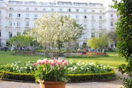 Cleveland Square